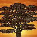 Le parole della consapevolezza (ciclo di seminari)
