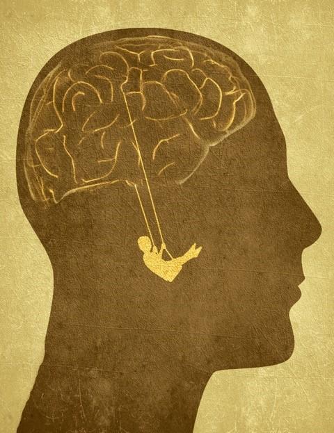 Psicobiologia Della Salute E Benessere Master Psicologia