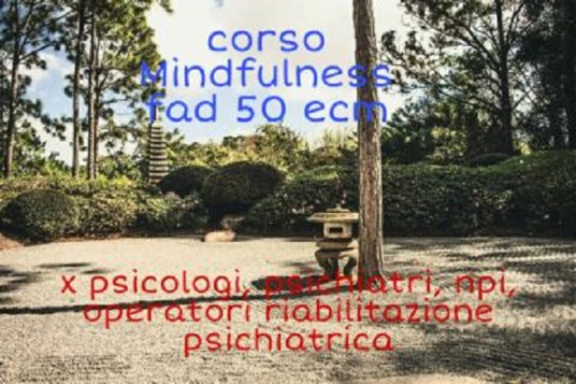 Mindfulness based therapy (FAD -ECM 50)